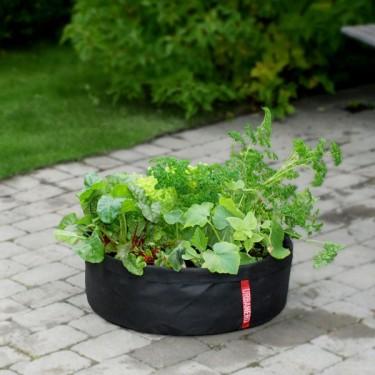 Vi säljer Microgarden 45 och 60 som är perfekt att odla sallat i. Foto: Odla