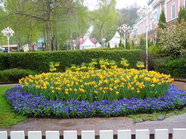 Liseberg blommar Foto: Sylvia Svensson