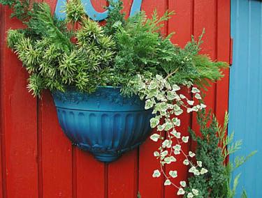 Gröna grenar i utekrukor håller bra fram till våren. Foto: Sylvia Svensson