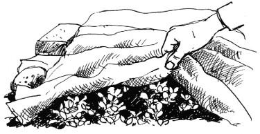 Genom att täcka med fiberduk skapas ett skyddat mikroklimat för dina grödor. Teckning: Han Veltman