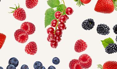 Bär & frukt