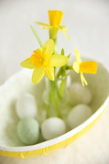Påsklilja, _Narcissus_, Tête à Tête i äggskålen. Foto: Blomsterfrämjandet