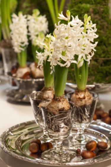Juldukning i silver och vitt med hyacinter i glas. Foto: Blomsterfrämjandet/Anna Skoog