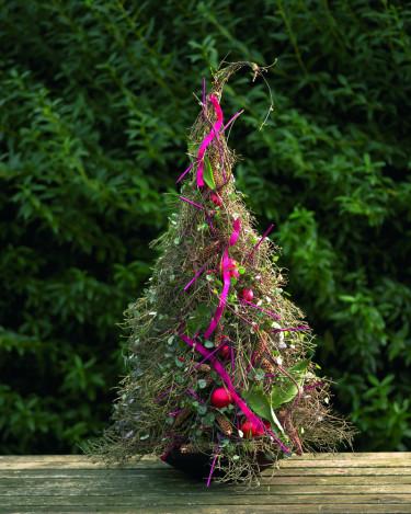 En gran av risiga kvistar och slingerväxten hjärtan på tråd kräver inte så mycket vattning. Foto: Floradania