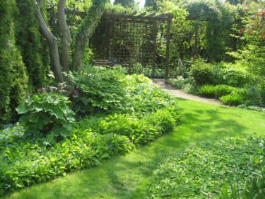 Växterna hjälper alltid till att skapa mjuka linjer, vare sig trädgårdens grundform är geometrisk eller organisk. Foto: Karin Malmberg