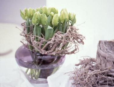 Bukett med tulpaner. Fotograf: Blomsterfrämjandet.