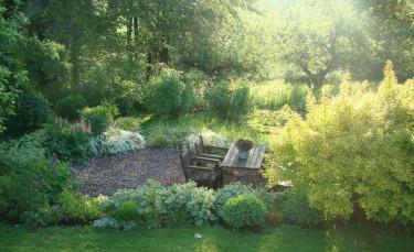 En bild från författarens egen trädgård, där naturen har haft mycket att säga till om vad gäller växtvalet! Foto: Katarina Kihlberg