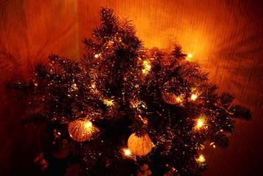 Julgran med belysning.