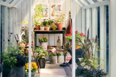 Blommor och växter i olika färgskalor harmonierar härligt tillsammans. Foto: Blomsterfrämjandet/Anna Skoog