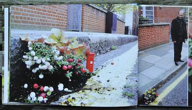Ett uppslag ur boken The Little Book of Little Gardens. Foto: Steve Wheen