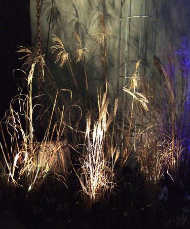 Nerifrån belysta gräsvippor - enkelt och effektfullt! Foto: Sylvia Svensson