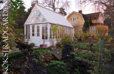 November i köksträdgården.