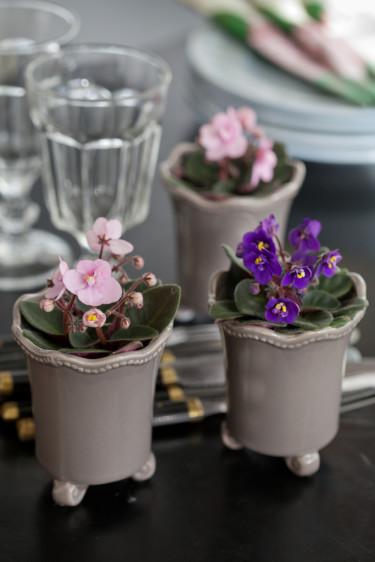 Ljuvligt söta saintpaulior i miniformat pryder middagsbordet.   Foto: Blomsterfrämjandet/Minna Mercke Schmidt