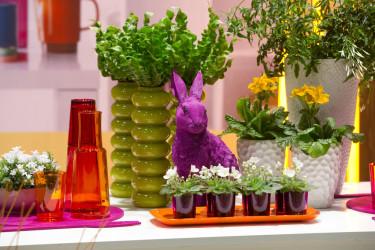 Låt växter, vaser och andra detaljer ta plats och samspela. Foto: Floradania