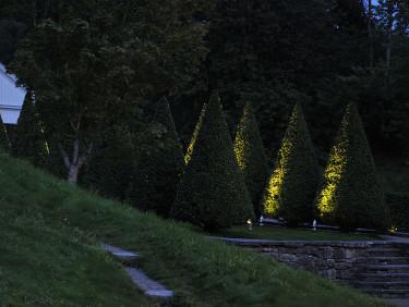 Klippta, belysta cypresser i Gunnebo Foto: Sylvia Svensson