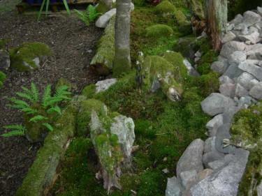 Tänk att få slå sig ner och bara vara bland mossa och sten.