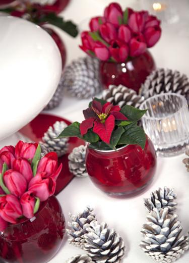 Modern jul i rött. Röda julstjärnor är klassiska inslag i vinterdukningen. Foto: Stars for Europe