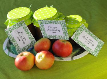Äppelchutney i söta burkar. Foto: Bernt Svensson