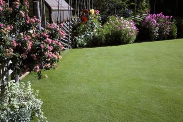 Satsa nästa helg på din vintertrötta gräsmatta!