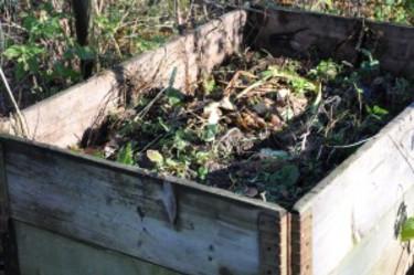 Med hjälp av pallkragar bygger du enkelt en trädgårdskompost. Foto: Maria Andersson
