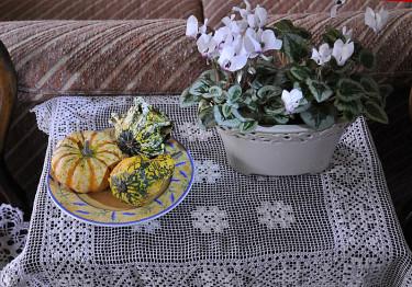 Pumpor som enkel dekoration. Foto och arr: Sylvia Svensson
