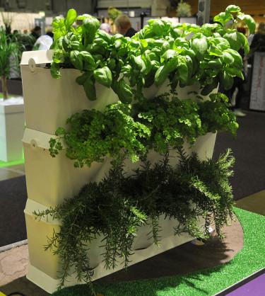 Venso Ecosolutions Minigarden Vertical. Foto: Bernt Svensson