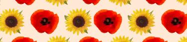 Blomsterfröer