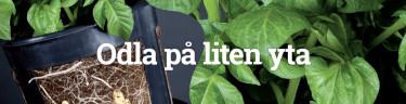 Smarta odlingssystem