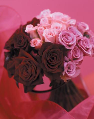 Storblommiga rosor.