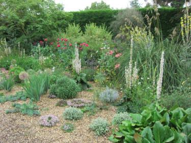 Välj växter som trivs med de förutsättningar din trädgård erbjuder. Arbeta med, inte emot naturen!