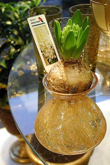 Kanske driva en hyacint i glas?Foto: Sylvia Svensson