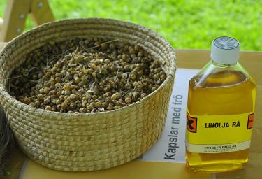 Linets frökapslar och rå linolja.  Foto: Sylvia Svensson
