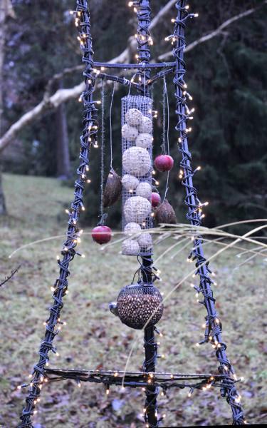 Fåglarnas julbord - ljusslinga lindad runt en ställning med fågelmatFoto: Sylvia Svensson