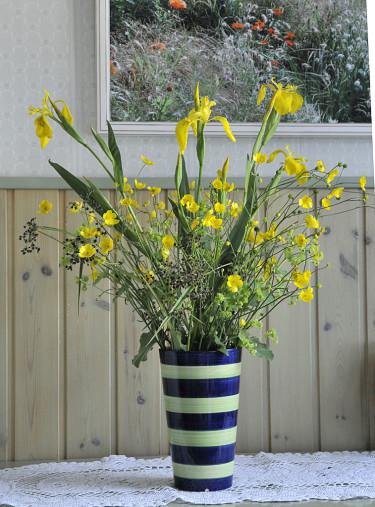 Svärdslilja _Iris pseudacorus_ och smörblommor hinner också  blomma ibland.