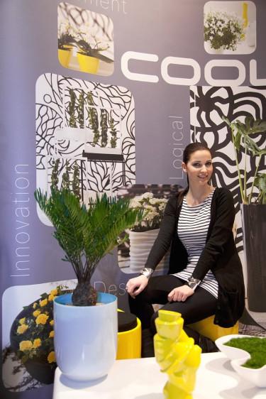 Anette Eckmann har delat upp växttyperna i Crazy, Classic, Creative och Cool.