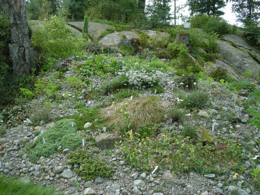 """Ett naturlig berg kompletterad med en """"kullerstenås"""". Foto: Sylvia Svensson"""