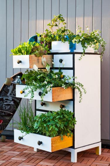En plantering som väcker uppmärksamhet! Foto: Blomsterfrämjandet.