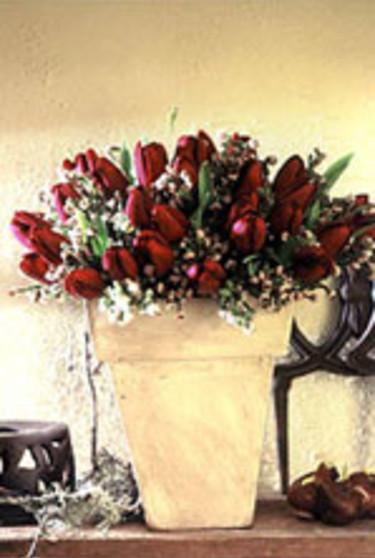En av vårens nyare tulpanfärger bjuder den mörklila tulpanen 'Jan Reus' på. Tillsammans med risp, mimosa eller ginst bildar den en härlig vårhälsning. Foto: IBC.