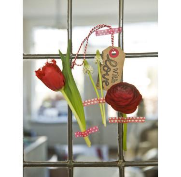 Tulpaner på fönsterrutan