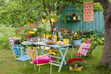 Kollektivt odlande Foto: Blomsterfrämjandet/Minna Mercke Schmidt