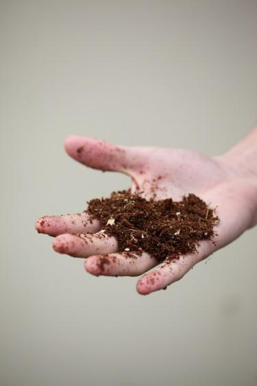 Jorden man odlar i har stor betydelse för resultatet.