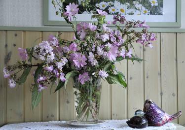Vitt, silvrigt rosa och purpurfärgat mot grågrönt Foto: Bernt Svensson