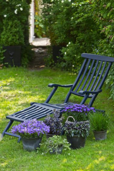 Vackra toner av blått i favorithörnan. Foto: Floradania