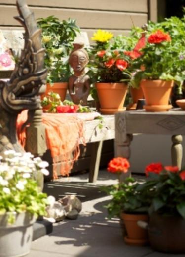 En blandning av jordnära och färgstarkt, men allt i varma toner. Foto: Blomsterfrämjandet/Gustaf Emanuelsson