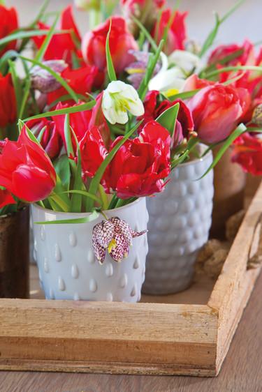 Röda tulpaner och kungsängsliljor, _Fritillaria meleagris_, i skön harmoni.  Foto: Blomsterfrämjandet