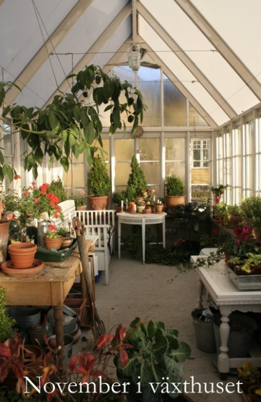 November i växthuset.