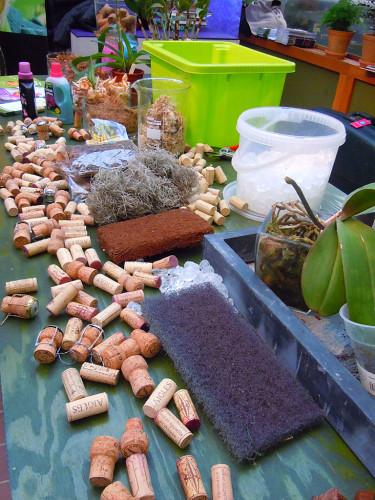 Div material att odla orkidéer i. Foto: Sylvia Svensson