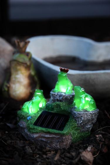 Rara grodor på sten kanske passar i din trädgård? OBS! Artikeln på bilden är ej vinst i tävlingen. Foto: Odla.nuShop