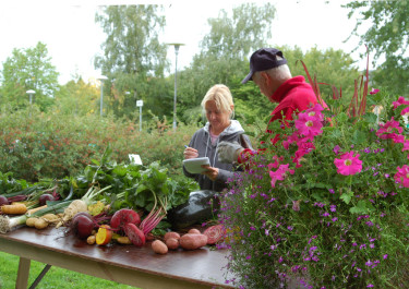 Riksförbundet Svensk Trädgård är engagerade i odling och trädgård landet runt.