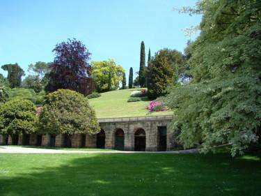 En grön och välmående gräsmatta önskar många av oss! Foto: Katarina Kihlberg